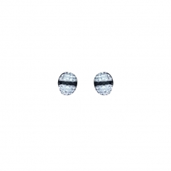 Swarovski Pierced pointiage Earrings
