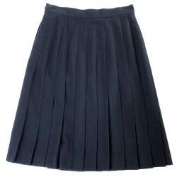 Escada Pleated flared skirt