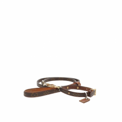 Louis Vuitton Leash and collar for pets.