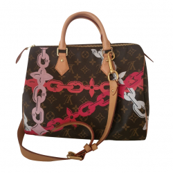 Louis Vuitton Speedy 30 Bay limited edition new