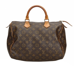 Louis Vuitton Monogramm Speedy 30
