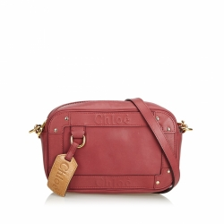 Chloé Leather Eden Crossbody Bag