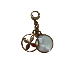 Fossil key chain