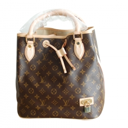 Louis Vuitton Neo Monogram Canvas
