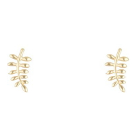 By Colette Women's 'Feuilles D'Or' Earrings
