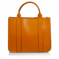 Giancarlo Bassi Women's Briefcase