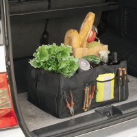 Innovagoods Organiseur portable 'Carry'