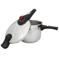 Renberg Induction Pressure Cooker