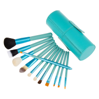Zoë Ayla 12 Piece Professional Brush Set