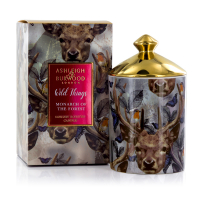 Ashleigh & Burwood Bougie 'Monarch of the Forest Wild Things' - 320 g