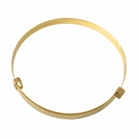 Golden Moments Bangle pour Femmes
