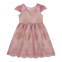 Little Girl's 'Lace Illusion' Dress